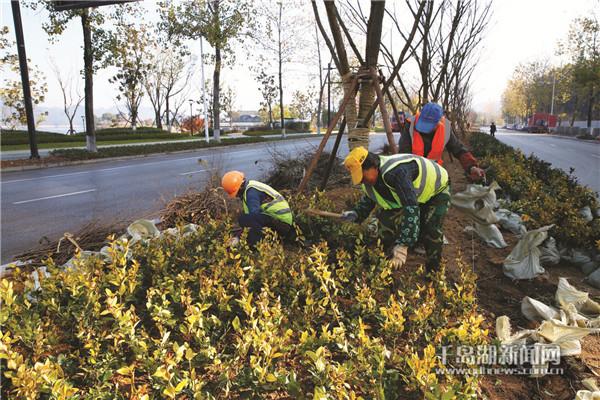 道路绿化美化 提升城市颜值