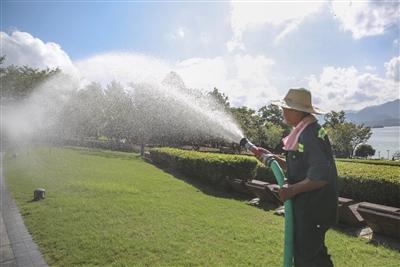 烈日下,园林工人用汗水浇灌绿色