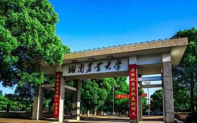 图:湖南农业大学 熊阳俊 摄